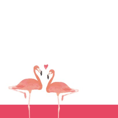 Felicitatiekaart Love birds flamingo's 2