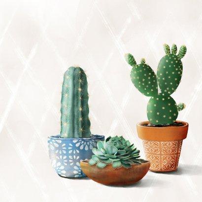 Felicitatiekaart met cactussen en succulent in pot 2