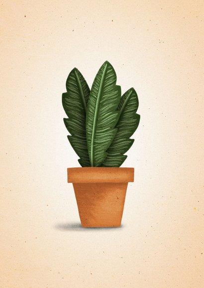 Felicitatiekaart 'nieuwe woning' met plant in pot 2