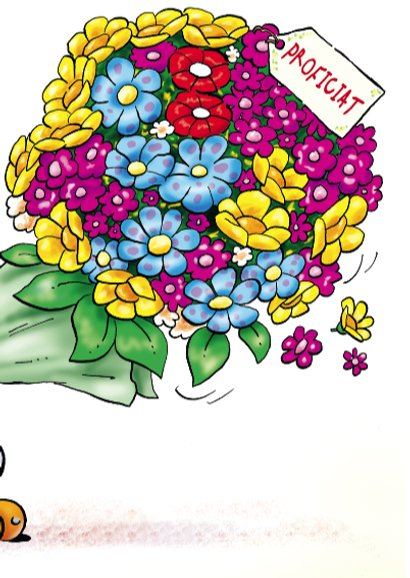 Felicitatiekaart Rocco gefeliciteerd 2 rocco met bloemen 3