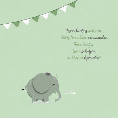 Felicitatiekaart tweeling jongen meisje mintgroen olifantjes 2