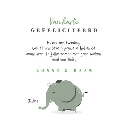 Felicitatiekaart tweeling jongen meisje mintgroen olifantjes 3
