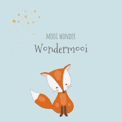 Felicitatiekaart voor geboorte jongen met een lief vosje 2