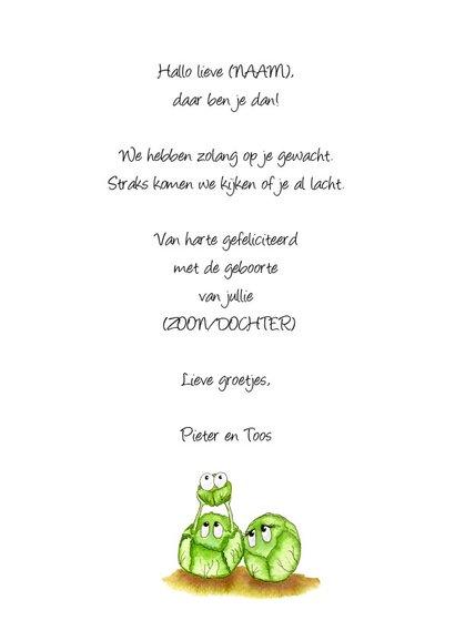 Felicitatiekaarten kleine spruit geboren 3