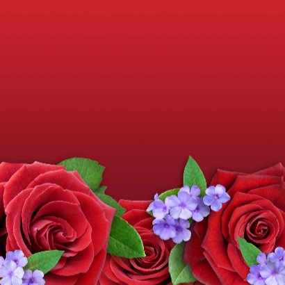 Fijne Valentijns Dag met rode rozen en sierlijke tekst 3