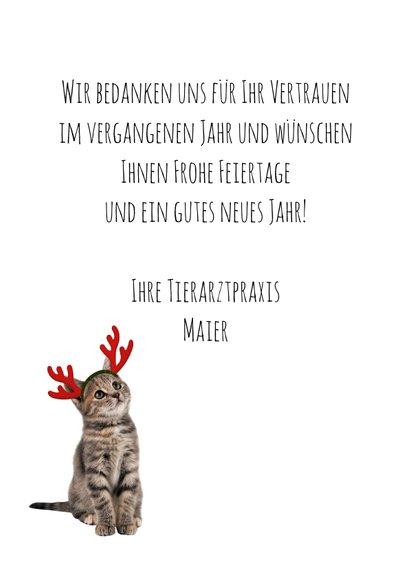 Firmenweihnachtskarte mit Weihnachtskatze 3