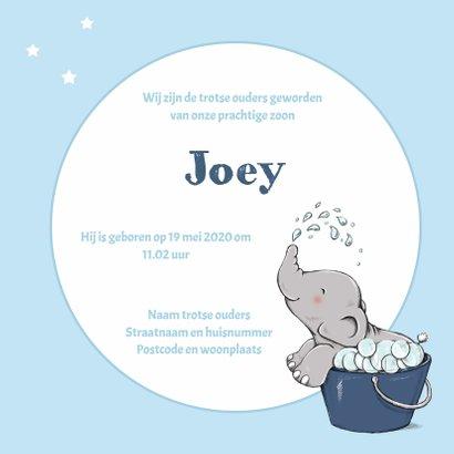 Geboorte bubbelbad olifant - IH 3
