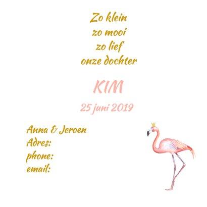 Geboorte flamingo meisje foto 3