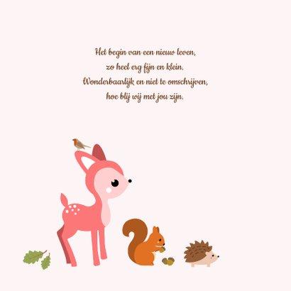 Geboorte - Herfst cirkel met dieren 2
