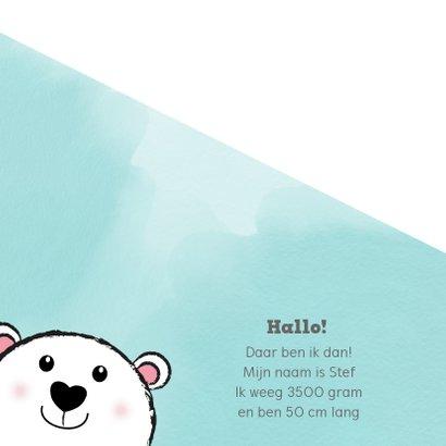 Geboorte hip kaartje waterverf met lief ijsbeertje 2