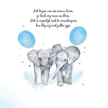 Geboorte jongetjes olifantjes 2