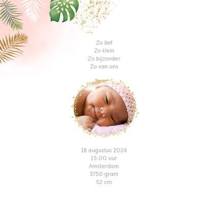 Geboorte leeuwtje meisje 2