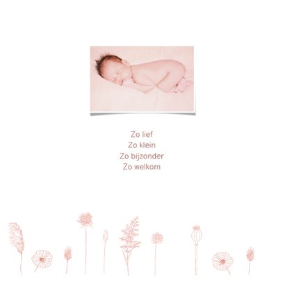 Geboorte meisje droogbloemen pastel 2