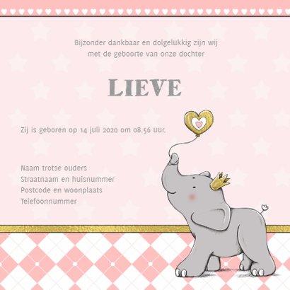 Geboorte meisje olifant goud-IH 3