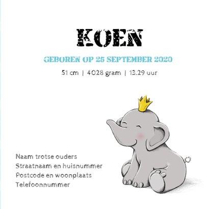 Geboorte olifant kroontje - IH 3