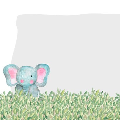Geboorte olifant waterverf - DH 2