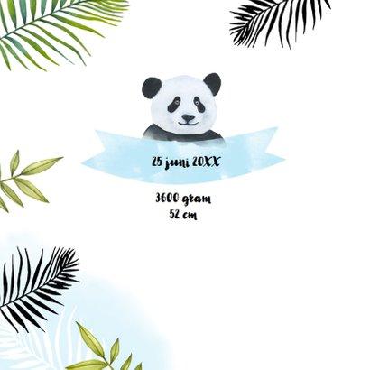 Geboorte pandabeertje aquarel 2