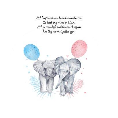 Geboorte tweeling meisje jongen olifantjes 2