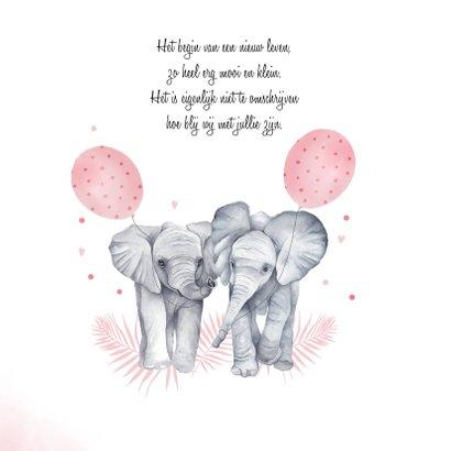 Geboorte tweeling meisjes olifantjes 2