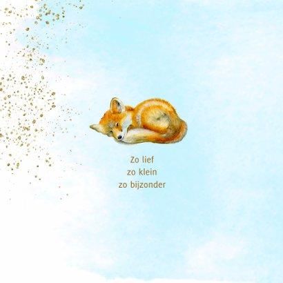 Geboorte vosje jongen 2
