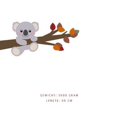 Geboortekaart herfst lief koalabeertje  2