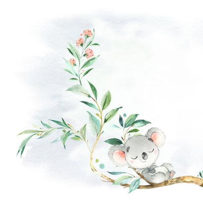 Geboortekaart jongen koala in boom 2