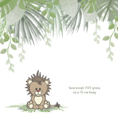 Geboortekaart jongen lief en stoer leeuwtje in de jungle 2