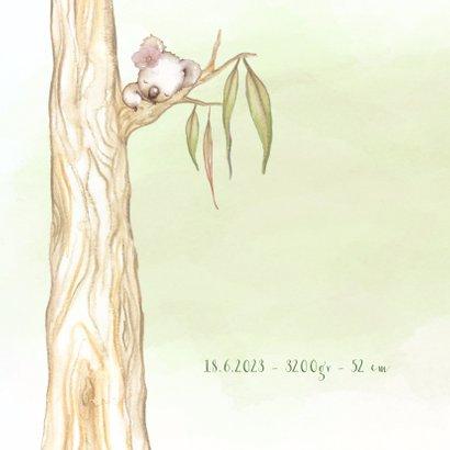 Geboortekaart koala-beer meisje 2