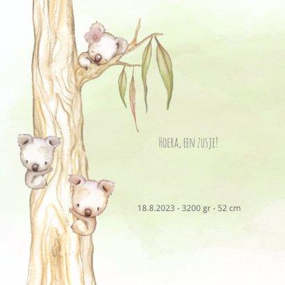 Geboortekaart koala-meisje met broertje en/of zusje 2
