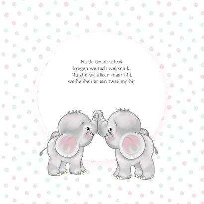 Geboortekaart meisje-tweeling olifantjes 2