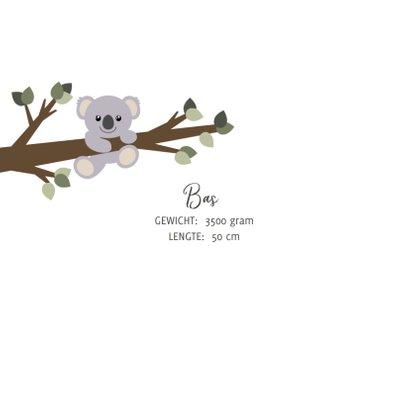Geboortekaart met een lief ontwerp van een aapje en koala  2