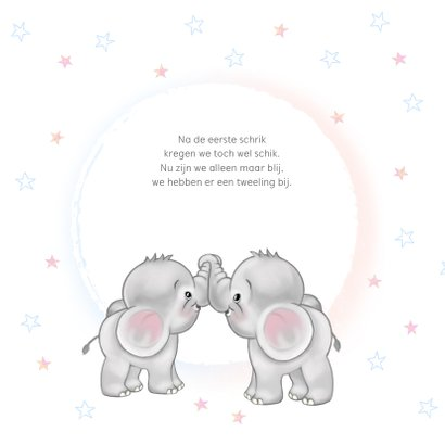 Geboortekaart olifantjes jongen en meisje tweeling 2