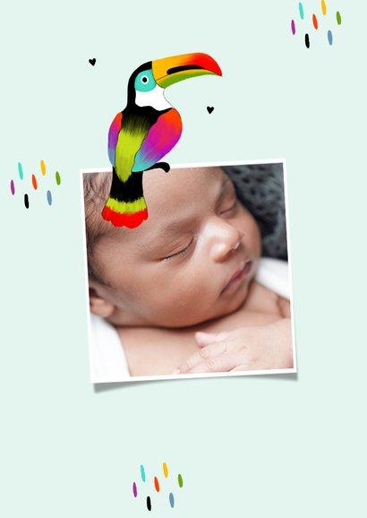 Geboortekaartje adoptie toekan tropisch kleurrijk 2