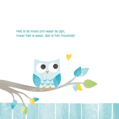 Geboortekaartje aqua uiltje  2
