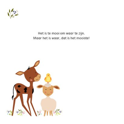 Geboortekaartje boerderij dieren 2