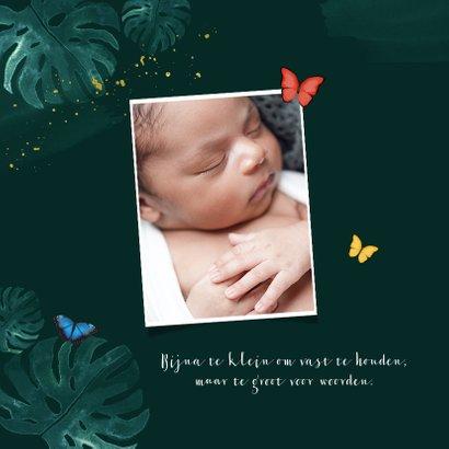 Geboortekaartje botanisch vlinders jongen tropisch 2