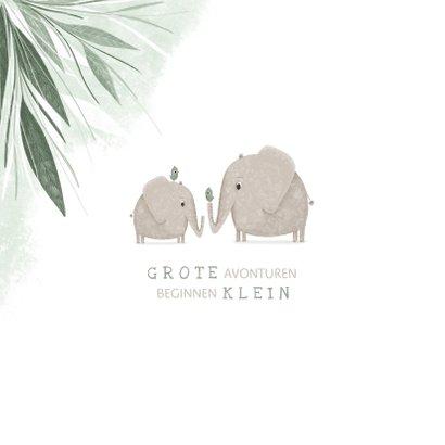 Geboortekaartje broertje met olifantjes en vogels 2