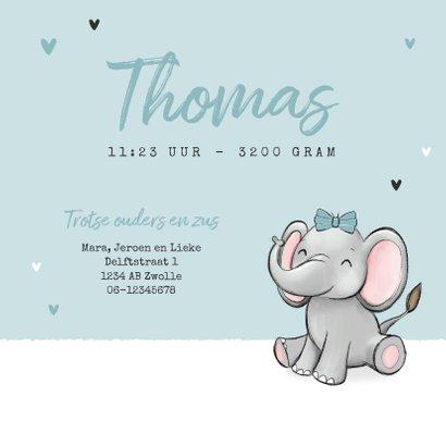Geboortekaartje broertje zus olifantjes hartjes strikjes 3