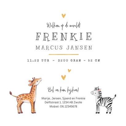 Geboortekaartje broertje zusje giraf zebra hartje goud 3