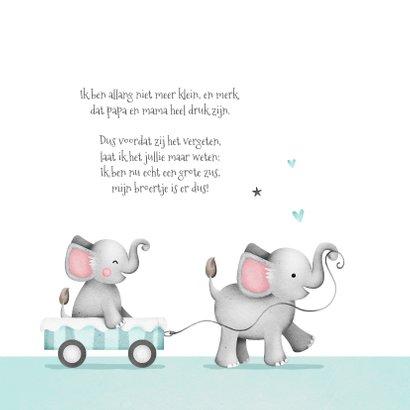 Geboortekaartje broertje zusje olifantjes wolkje 2
