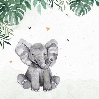 Geboortekaartje dieren jungle giraf olifant tijger waterverf 2