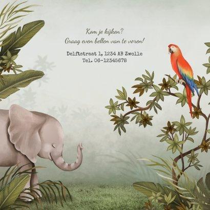 Geboortekaartje dieren jungle olifant papegaai  2