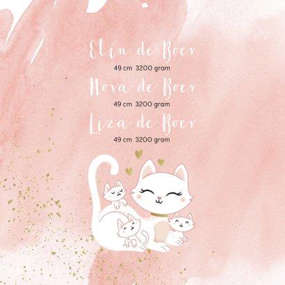 Geboortekaartje drieling meerling meisjes poes met kittens 2
