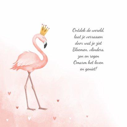 Geboortekaartje flamingo hartjes meisje verf kroontje 2
