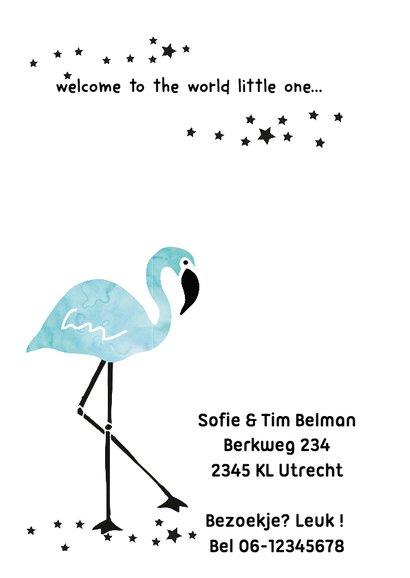 Geboortekaartje Flamingo Levi 2
