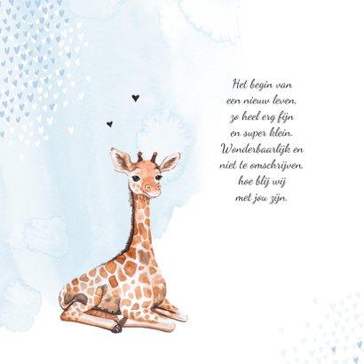 Geboortekaartje giraf hartjes blauw waterverf 2