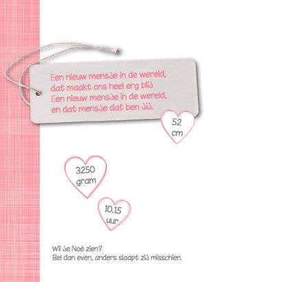 Geboortekaartje-hartjes-Noé-SK 2