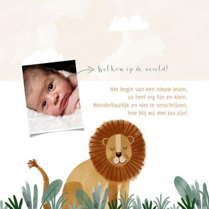 Geboortekaartje hip leeuw savanne illustratie 2