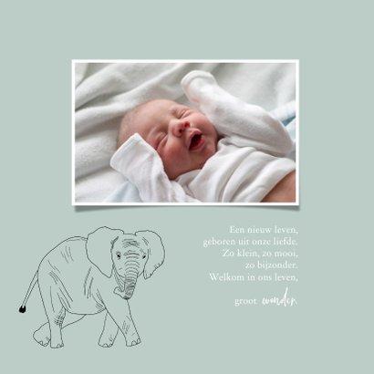 Geboortekaartje hip lijntekening olifant 2