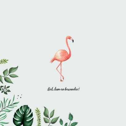 Geboortekaartje hip met flamingo's en bladeren 2
